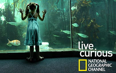 ~Live Curious~ National Geographic ~