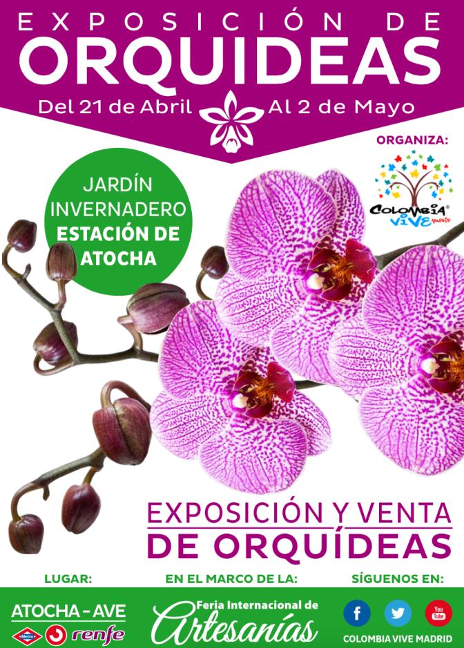 ~Orquídeas. De Madrid al cielo.~